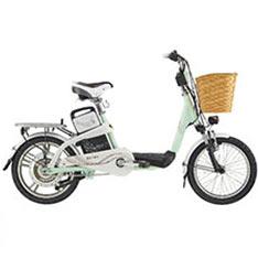 捷安特 GIANT EA101 鋰電池電動輔助自行車