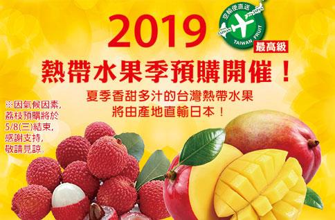 2019熱帶水果季預購開催!