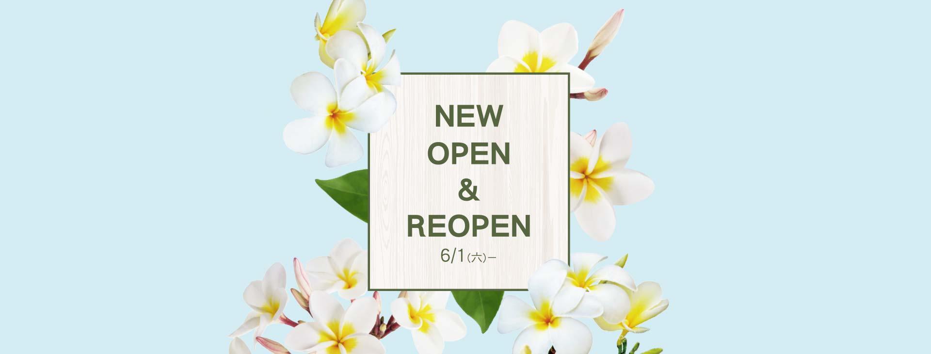 NEW OPEN & REOPEN