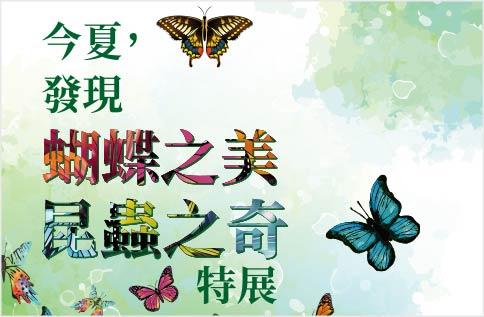 9F和式庭園 蝴蝶之美 昆蟲之奇 特展