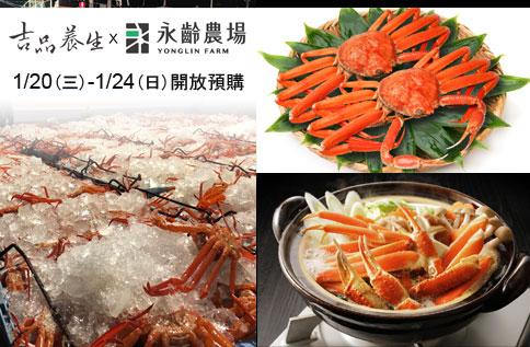 B2 吉品養生敦化SOGO旗艦店 【日本鳥取-紅楚蟹】