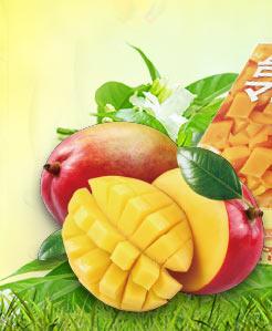 2019熱帶水果季預購